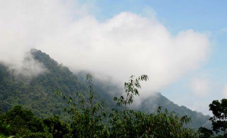 Ve dep hoang so o day nui cao nhat Quang Ngai - Anh 7