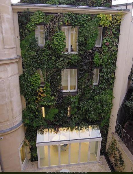 Thu do Paris: Nguoi dan trong cay quanh thanh pho - Anh 3