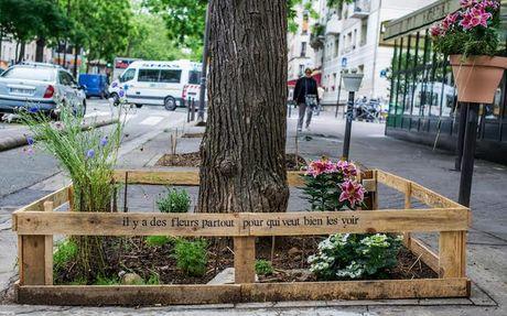 Thu do Paris: Nguoi dan trong cay quanh thanh pho - Anh 8