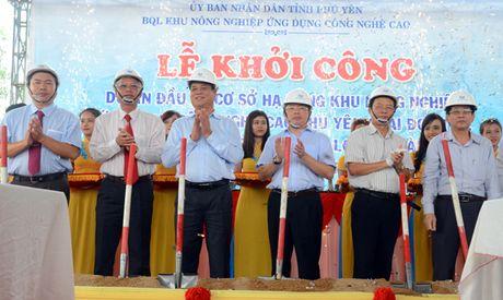Phu Yen: Khoi cong xay dung Du an ha tang Khu nong nghiep ung dung cong nghe cao - Anh 1