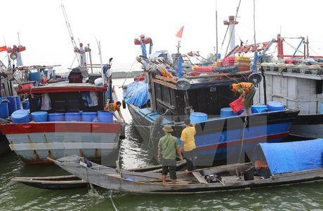 Quang Ninh lap 7 doan cong tac xuong dia phuong chi dao chong bao - Anh 1