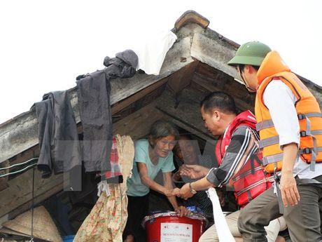 De xuat ho tro khan cap 2.000 tan gao cho nguoi dan Quang Binh - Anh 1