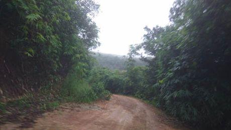 Da tim thay may bay roi tai Ba Ria - Vung Tau - Anh 1