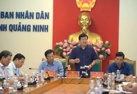 Pho Thu tuong Trinh Dinh Dung chi dao phong, chong bao tai Quang Ninh - Anh 1