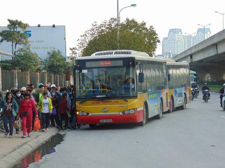 Den nam 2020, xe bus se dap ung 25% nhu cau cua nguoi dan - Anh 1