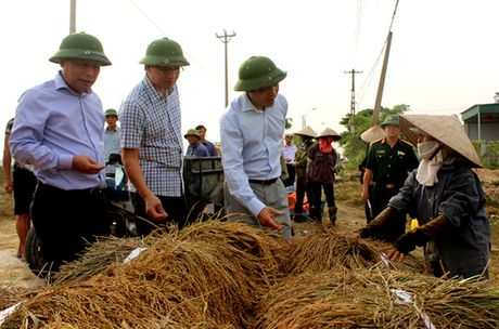 "Cong an, bo doi, hoc sinh gap lua giup dan ""chay"" bao so 7 - Anh 3"