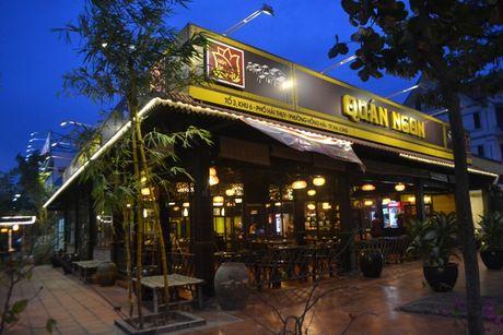 Bao so 7: Quang Ninh da co mua va gio giat manh - Anh 3