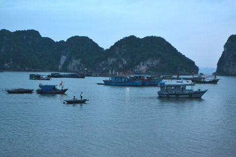 Bao so 7: Quang Ninh da co mua va gio giat manh - Anh 4