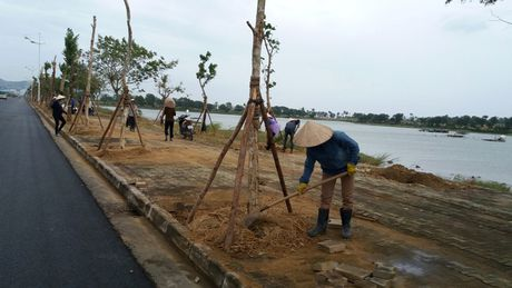 Bao so 7: Quang Ninh da co mua va gio giat manh - Anh 8