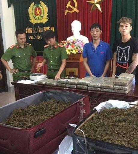 Nghe An: Bat hai doi tuong van chuyen 32 kg can sa - Anh 1