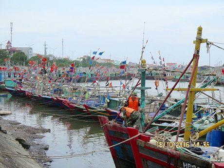 Pho Thu tuong Trinh Dinh Dung kiem tra cong tac phong, chong bao so 7 tai Hai Phong - Anh 2