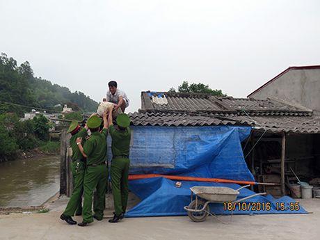 Pho Thu tuong Trinh Dinh Dung kiem tra cong tac phong, chong bao so 7 tai Hai Phong - Anh 4