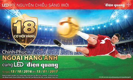 LED Dien Quang nang tam thuong hieu tren truong quoc te - Anh 3