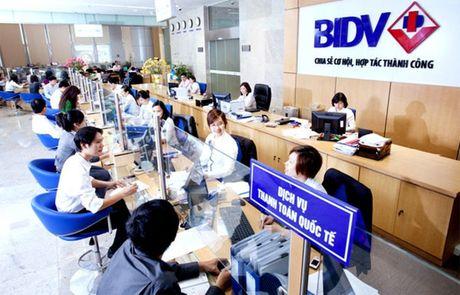 BIDV giam lai suat cho vay ngan han - Anh 1