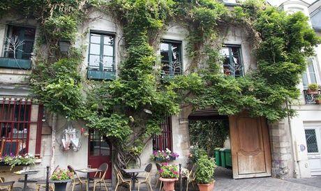 Paris khuyen khich dan phu xanh thanh pho - Anh 7