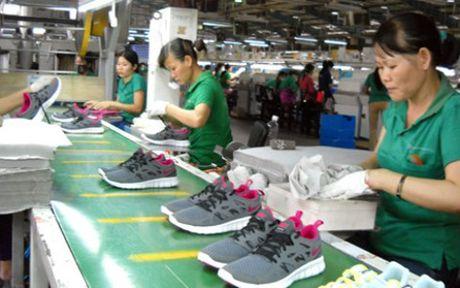 Nha cung ung nguyen lieu cho Nike, Adidas muon mo rong san xuat tai Viet Nam - Anh 1