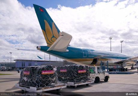 Vietnam Airlines nhan van chuyen hang cuu tro lu lut mien phi - Anh 1