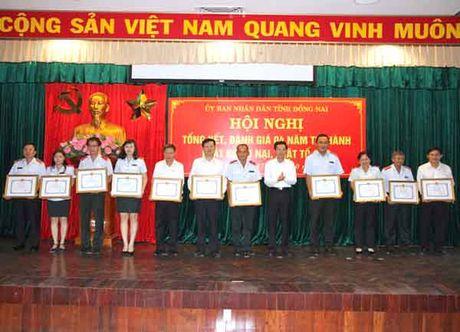 Dong Nai: Con 305 don thuoc tham quyen - Anh 1