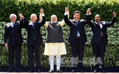 Lanh dao BRICS keu goi hop tac chong tham nhung - Anh 1