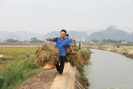 Ung pho voi bao so 7: Thanh Hoa san sang phuong an so tan dan tai cac khu vuc nguy hiem - Anh 1