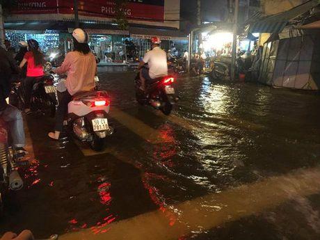 Khong mua nhung Sai Gon van ngap do dot trieu cuong cao nhat nam - Anh 3
