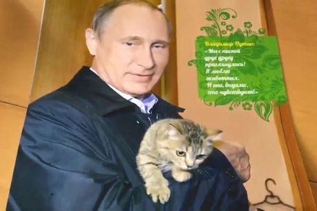 Hinh anh Putin om meo len lich 2017 - Anh 1
