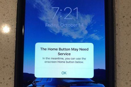 iPhone 7 bi loi phim Home hang loat, Apple da lieu truoc dieu nay? - Anh 1
