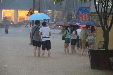 Quang Ninh: Dung tat ca cuoc hop de chong bao so 7 - Anh 1