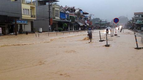 Quang Ninh ban 48 qua phao hieu goi tau thuyen tranh bao so 7 - Anh 1