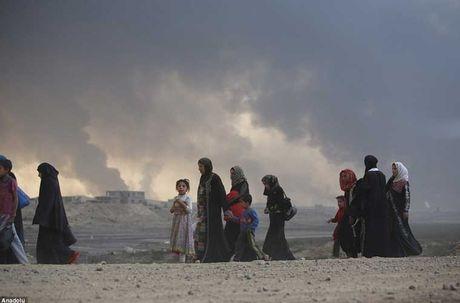 Chum anh IS dot cac gieng dau o Mosul de tu thu - Anh 10