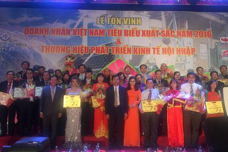 Vinh danh 80 doanh nhan Viet Nam tieu bieu, xuat sac nam 2016 - Anh 2