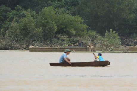 Xot xa thay mo chim trong bien nuoc Huong Khe - Anh 2