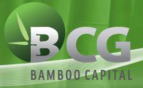 Ong Nguyen Ho Nam tro lai vi tri Chu tich HDQT Bamboo Capital - Anh 1