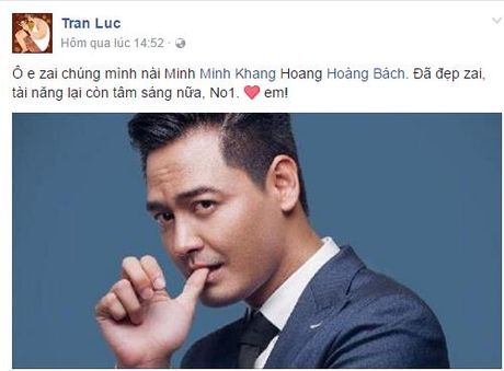 Sao Viet 'rung rung nuoc mat' truoc tam long cua MC Phan Anh - Anh 2