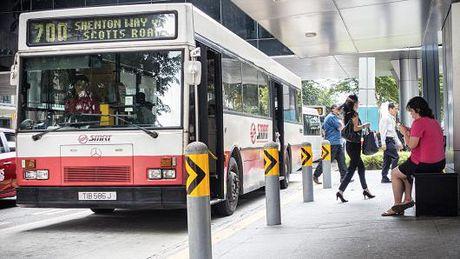 Singapore sap thu nghiem xe bus tu lai - Anh 1