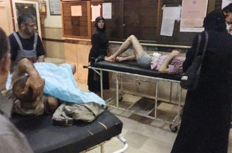 Phien quan ban pha mien Tay Aleppo bat chap ngung ban nhan dao - Anh 2