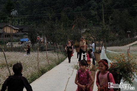Len Ha Giang bang qua dong tam giac mach tham nha cua Pao - Anh 5