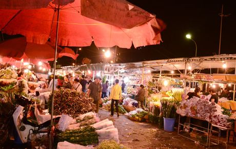 Dip 20/10: Da dang cac loai hoa tai cho Quang An - Anh 1