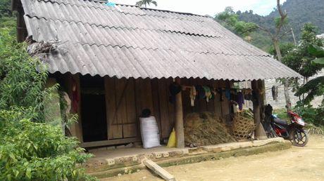Thanh Hoa: Be gai 12 tuoi mang thai 7 thang nghi ngo do bi hang xom hiep dam - Anh 2