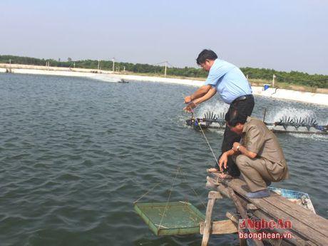 Xu huong su dung he thong lang loc trong nuoi tom tham canh - Anh 1