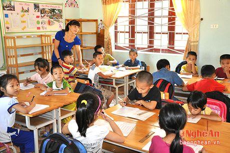 Xay dung phuong Hoa Hieu (Thai Hoa) dat chuan do thi van minh - Anh 3