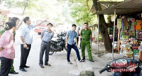 Xay dung phuong Hoa Hieu (Thai Hoa) dat chuan do thi van minh - Anh 4