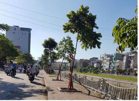 Khuong Dinh: Thuc hien tot 'Nam trat tu va van minh do thi 2016' - Anh 1