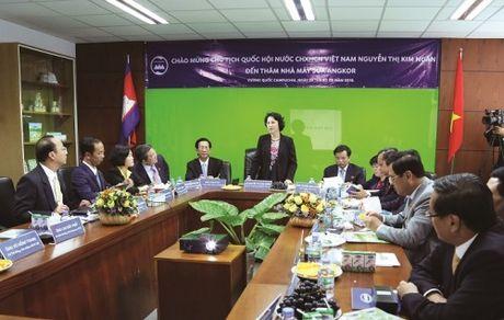 Doan DBQHVN tham nha may sua Angkor cua Vinamilk tai Campuchia - Anh 4