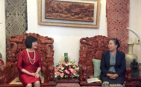 Gap go thuong nien nu can bo Ngoai giao hai nuoc Viet Nam - Lao - Anh 1