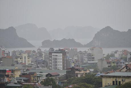 Pho thu tuong thi sat cong tac chong bao tai Quang Ninh - Anh 6