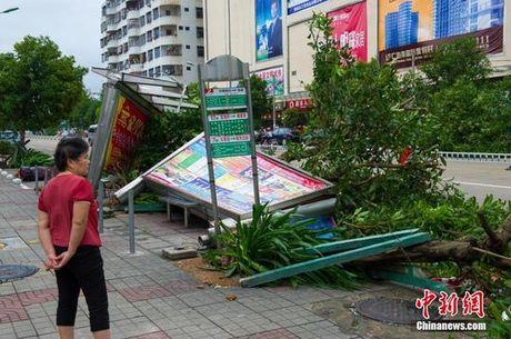 Hinh anh bao Sarika can quet phia nam Trung Quoc - Anh 3
