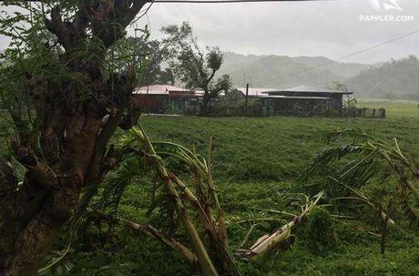 Kinh hoang sieu bao Haima tan pha Philippines - Anh 19