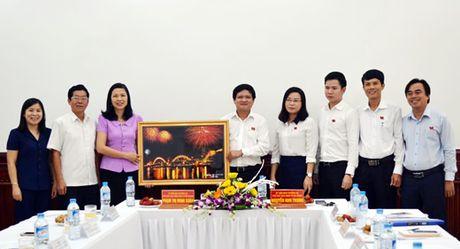 Doan cong tac HDND tinh Tuyen Quang trao doi kinh nghiem voi HDND TP Da Nang - Anh 1
