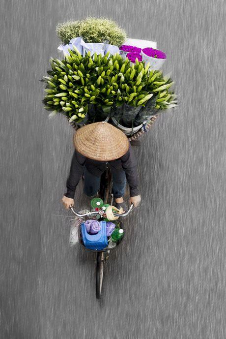 Xe hang rong Ha Noi lam say long co gai Ha Lan - Anh 1